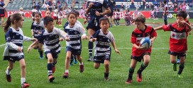 VIDEO: The Adorable Side of the Sevens