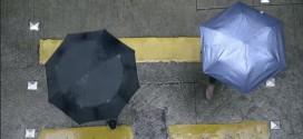 VIDEO: Finding Calm Among Hong Kong's Chaos